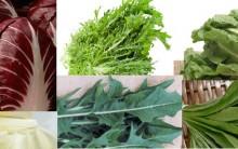Como Cultivar Chicória – Vitaminas e Benefícios da Hortaliça