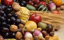 Alimentos Probióticos e Prebióticos O Que São e Benefícios