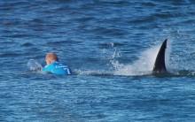 Tubarão Ataca Surfista Mick Fanning na África do Sul