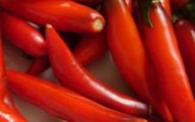 Alimentos Afrodisíacos – Melhoram o Desempenho Sexual