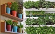 Horta em Apartamento – Dicas de Como Fazer e Cuidar