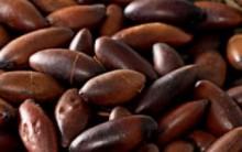Receitas com Castanhas ou Semente de Baru e Vitaminas