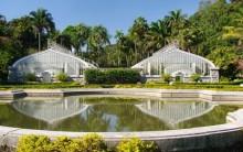 Jardim Botânico de São Paulo – Preço das Entradas, Endereço, Atrações e Fotos