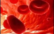 Alimentos Indicados e Proibidos em Caso de Hemorragia