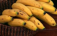 Chá para Dormir – Chá de Casca de Banana para Insônia