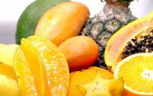 Alimentos Contra Cansaço – Nutrientes que Dão Energia e Benefícios