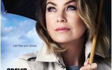 12ª Temporada de Grey's Anatomy no Netflix  – Informações Sobre Séries da TV