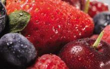 Flã de Iogurte com Frutas – Receita de Flã e Compota para Servir Junto