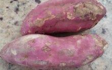 Vitaminas e Benefícios da Batata Doce – Porque a Batata Doce é um Alimento Funcional