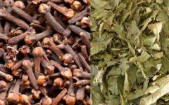 Emagrecer Rápido com Chá Verde e Cravo da Índia – Dica de Dieta para Emagrecer