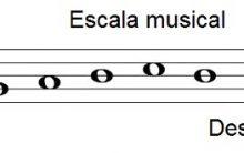 Escala Musical – O Que É, Formação e Tipos de Escala na Música – Teoria Musical Online