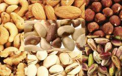 Dieta com Castanhas – Porque Emagrece, Nutrientes e Benefícios para Saúde