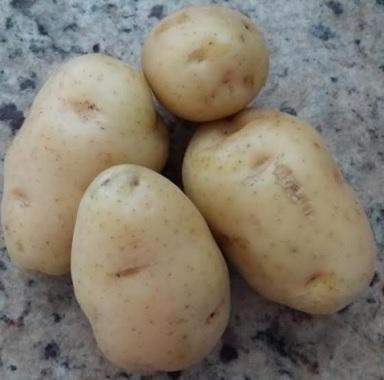 calorias batata inglesa assada
